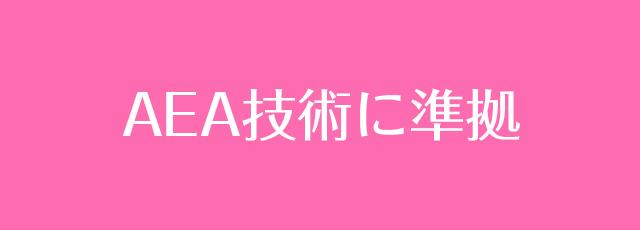 人気資格の日本エステティック業協会(AEA)に準拠したレッスン